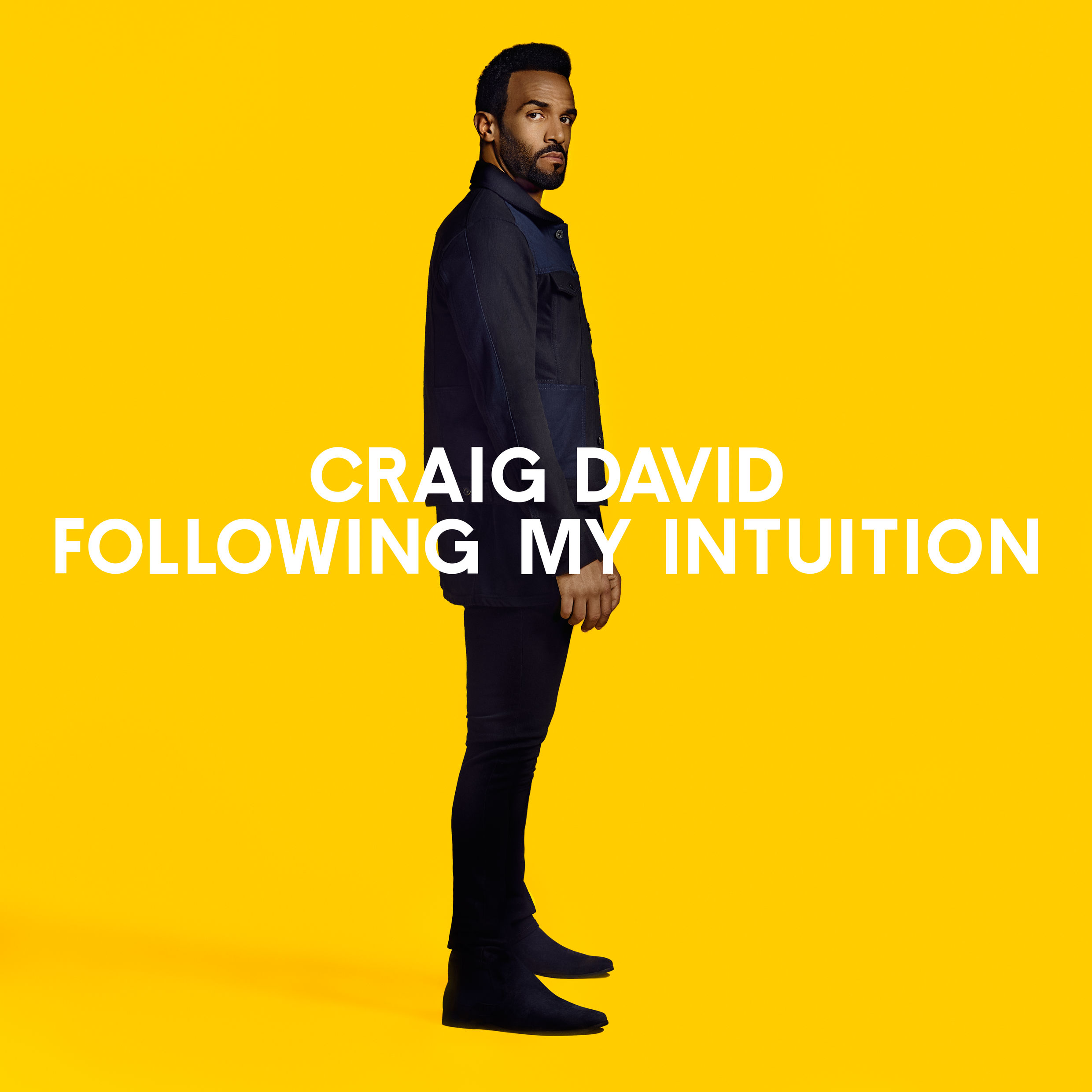 Image result for CRAIG DAVID FOLLOWING MY INTUITION