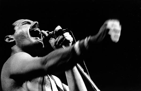 Freddie Mercury in action